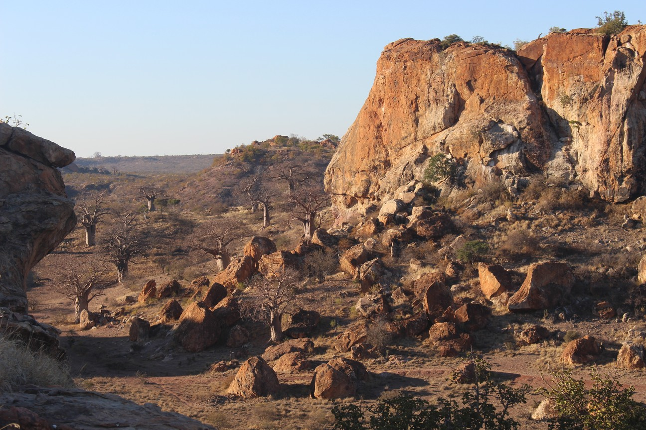 Mapungubwe the Land of Baobabs