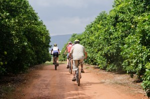 Orange grove cycling tour