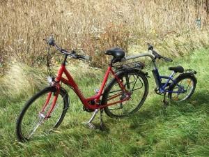 bod_unisex-bike_trailer